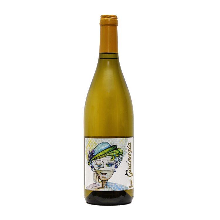 vino-bottiglia-gaudenzia-mecella